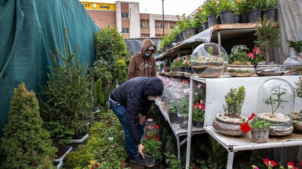 بازار گل در آستانه سال نو