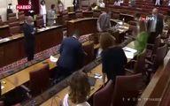 حمله موش بزرگ به مجلس اندلس اسپانیا