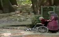 آخرین فیلم از مرحوم محسن قاضی مرادی وهمسرش مهوش وقاری را ببینید