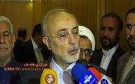 خبر خوش صالحی از نیروگاه اراک و بوشهر